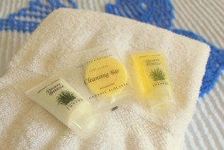 Blue Swallow Amenities