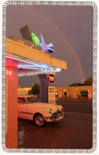 Chief and Rainbow--ELKO